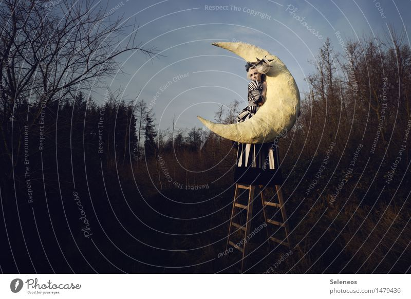Moonlove Mensch Frau Natur Ferne Winter Wald Erwachsene Umwelt Herbst feminin Freiheit leuchten Ausflug Abenteuer berühren festhalten