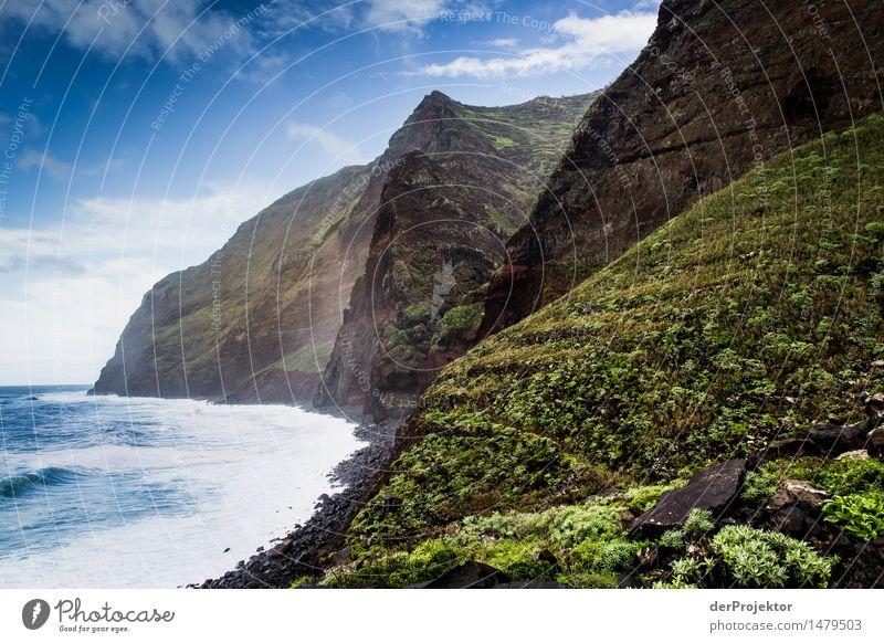 Die Vulkaninsel Natur Ferien & Urlaub & Reisen Pflanze Meer Landschaft Tier Ferne Winter Strand Berge u. Gebirge Umwelt Gefühle Küste Freiheit Felsen Tourismus