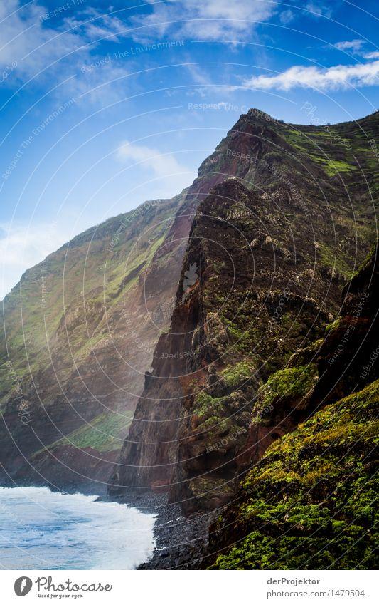 Steilküste Madeira Natur Ferien & Urlaub & Reisen Pflanze Meer Landschaft Ferne Winter Berge u. Gebirge Umwelt Küste Freiheit Felsen Tourismus Zufriedenheit wandern Wellen