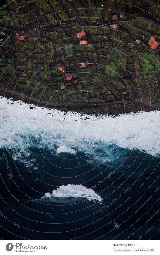 Monsterwelle vs. Küstendorf Natur Ferien & Urlaub & Reisen Pflanze Meer Landschaft Ferne Winter Umwelt Tourismus Angst Wellen Insel Ausflug Abenteuer Urelemente