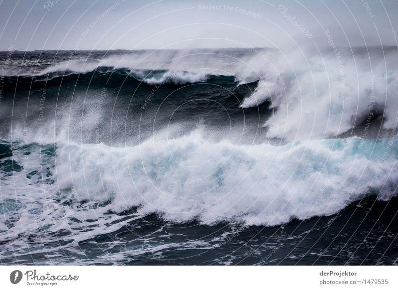Doppelwelle Ferien & Urlaub & Reisen Tourismus Ausflug Abenteuer Umwelt Natur Urelemente Luft Wasser Wassertropfen Winter schlechtes Wetter Wellen Küste Meer