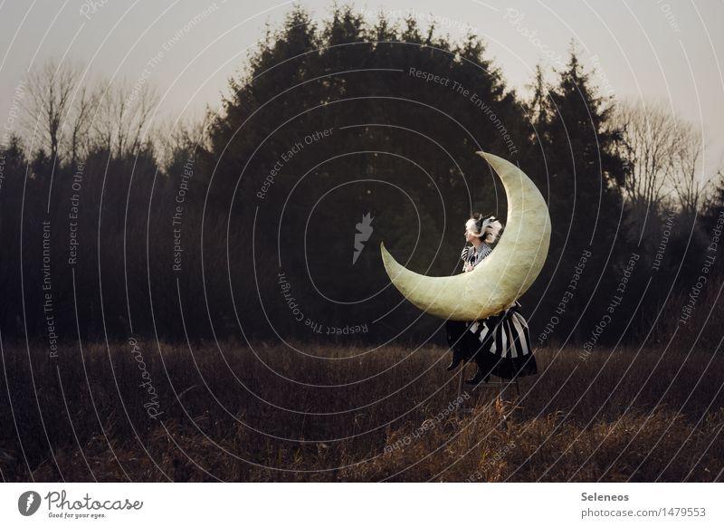 . Mensch Frau Natur ruhig Ferne Erwachsene Umwelt Herbst Wiese Freiheit Stimmung Park träumen Feld Kreativität groß