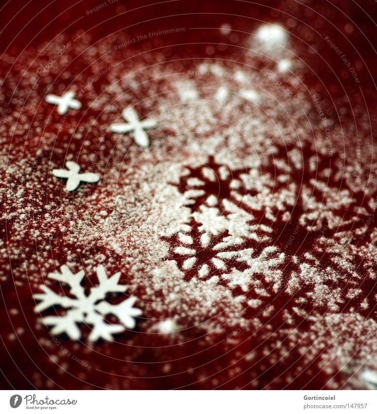 Snowflakes Weihnachten & Advent schön Winter Schnee Feste & Feiern Dekoration & Verzierung Jahreszeiten Textfreiraum verschönern Weihnachtsdekoration
