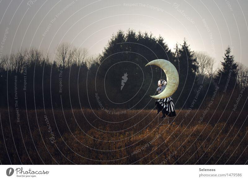 Mondsüchtig Mensch feminin Frau Erwachsene 1 Umwelt Natur Landschaft Himmel Wolken Herbst Baum Wiese Feld träumen Sehnsucht Fantasygeschichte Farbfoto