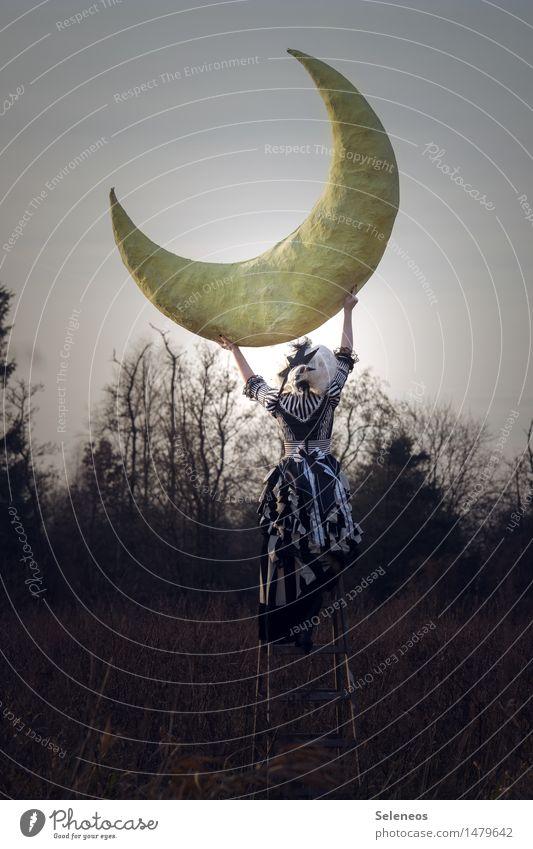 the moon Frau Mensch Himmel Natur Winter Wald Erwachsene Umwelt Herbst feminin träumen Unendlichkeit Kleid Mond Nachthimmel gigantisch