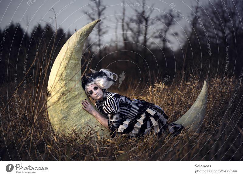 Night night, sleep tight Mensch Frau Natur Baum Erholung ruhig Erwachsene Umwelt Gefühle Herbst Wiese feminin Stimmung Zusammensein Freundschaft träumen