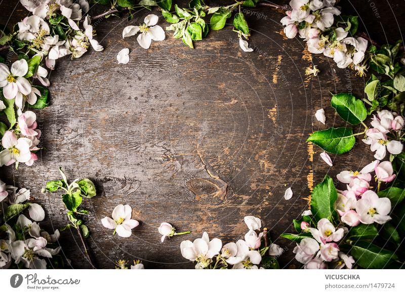 Baumblüten auf rustikalen Hintergrund , Rahmen Natur Pflanze Blatt Blüte Frühling Stil Hintergrundbild Holz rosa Design Dekoration & Verzierung Tisch Blühend