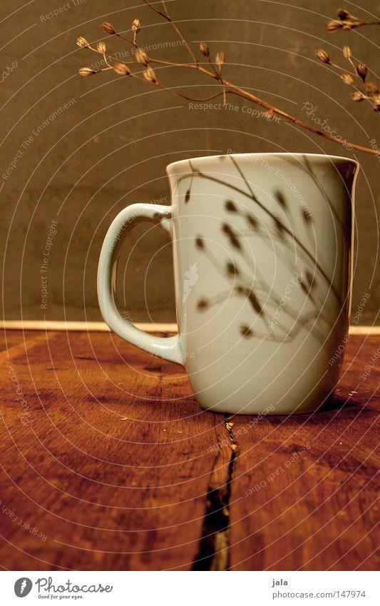 guten morgen! Pflanze Holz grau braun Tisch Ordnung Kaffee Küche weich Tee trocken Tasse Stillleben hell-blau