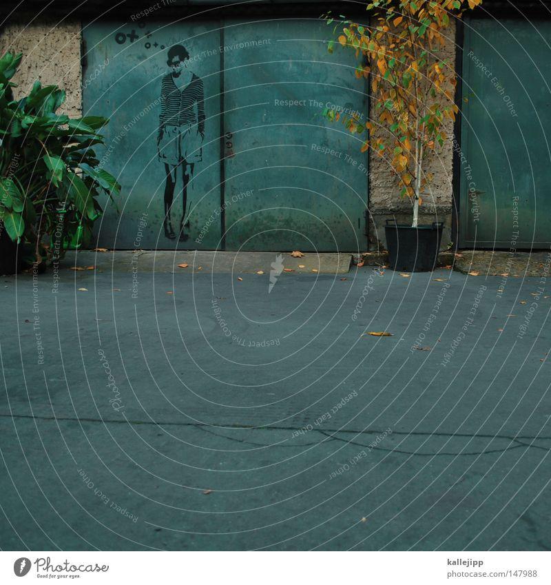 nette nachbarsfrau Frau Mensch Baum Stadt Pflanze Herbst Graffiti Kunst Bauernhof Tor Parkplatz Garage Straßenkunst ungesetzlich Tagger Wandmalereien