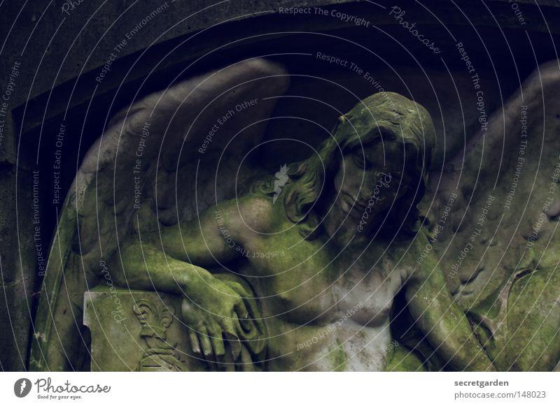 [HH08.4] geflügelt. schön Gesicht Leben ruhig Winter Haus Feste & Feiern Ruhestand maskulin Mann Erwachsene Brust Arme Kunst Skulptur Mauer Wand Flügel Stein
