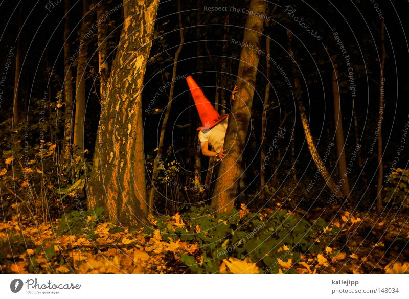 rumpelstilzchen Mann Mensch Dach Stuhlgang urinieren besetzen Miettoilette Baustelle klein groß Humor Kunst Wald Baum Baumstamm ökologisch Nacht Märchen