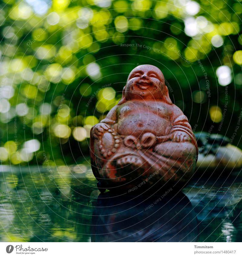 900. So weit, so gut. Umwelt Natur Sommer Schönes Wetter Garten sitzen blau grün weiß Gefühle Zufriedenheit Lebensfreude Gelassenheit ruhig Glastisch