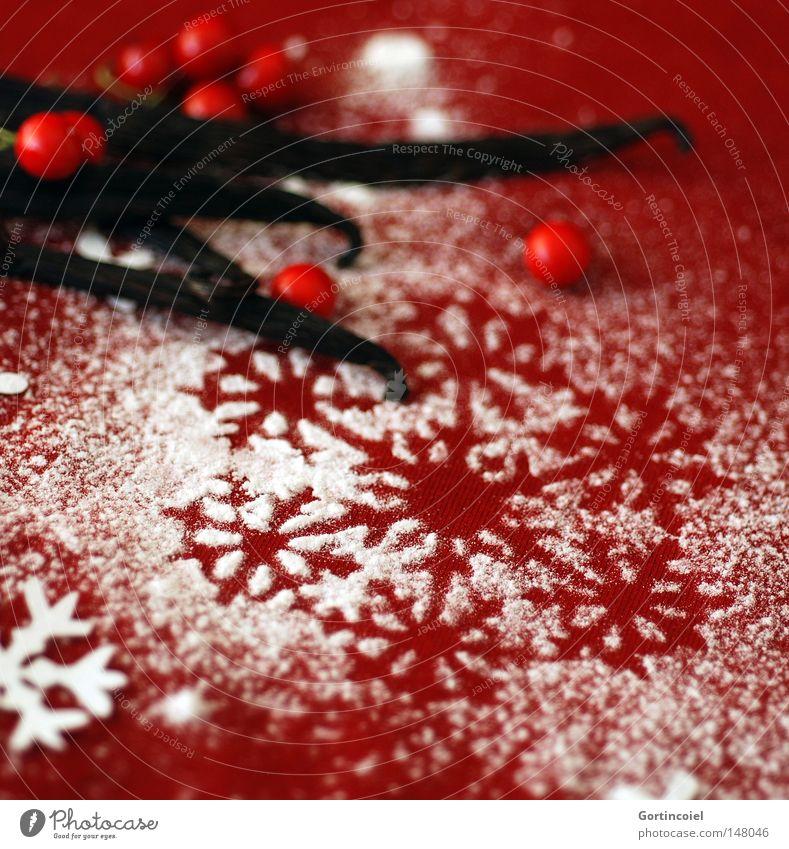 Adventsstimmung schön Weihnachten & Advent weiß rot Feste & Feiern Dekoration & Verzierung Kräuter & Gewürze Symbole & Metaphern Frucht Stimmung Beeren Vorfreude Weihnachtsdekoration Eiskristall Schneeflocke Dezember