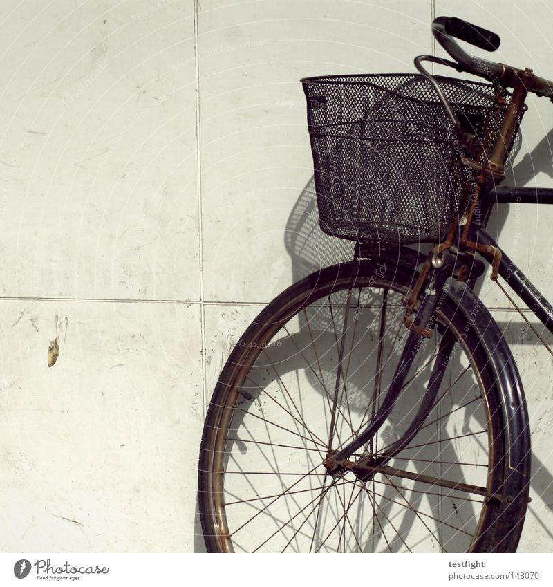 abgestellt Fahrrad unterwegs Wand Korb Licht Verkehr anlehnen parken fahrradkorb Schatten