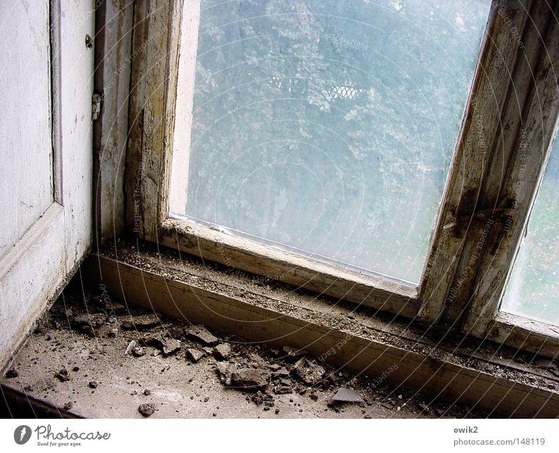 Lange nicht gelüftet alt Einsamkeit Fenster Wand Farbstoff Mauer Innenarchitektur Glas geschlossen kaputt Ecke Vergänglichkeit verfallen historisch