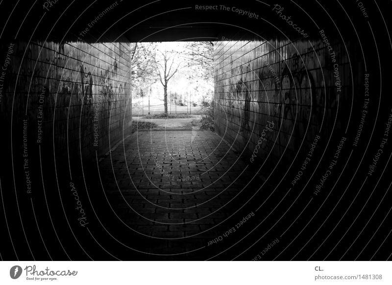 ausweg Natur Baum Tunnel Bauwerk Mauer Wand Wege & Pfade dreckig dunkel authentisch gruselig Neugier Hoffnung Glaube Traurigkeit Tod Sehnsucht Einsamkeit Angst