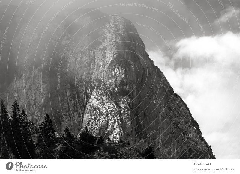 Benediktenwand Ferien & Urlaub & Reisen Tourismus Ausflug wandern Umwelt Natur Landschaft Himmel Wolken Sommer Wetter schlechtes Wetter Nebel Baum Wald Felsen