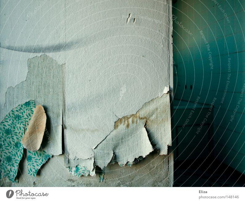 Wie neu alt Blume blau Haus Einsamkeit Wand Gebäude leer Bad Fliesen u. Kacheln Tapete Verfall Ruine Renovieren vergilbt Bruchbude