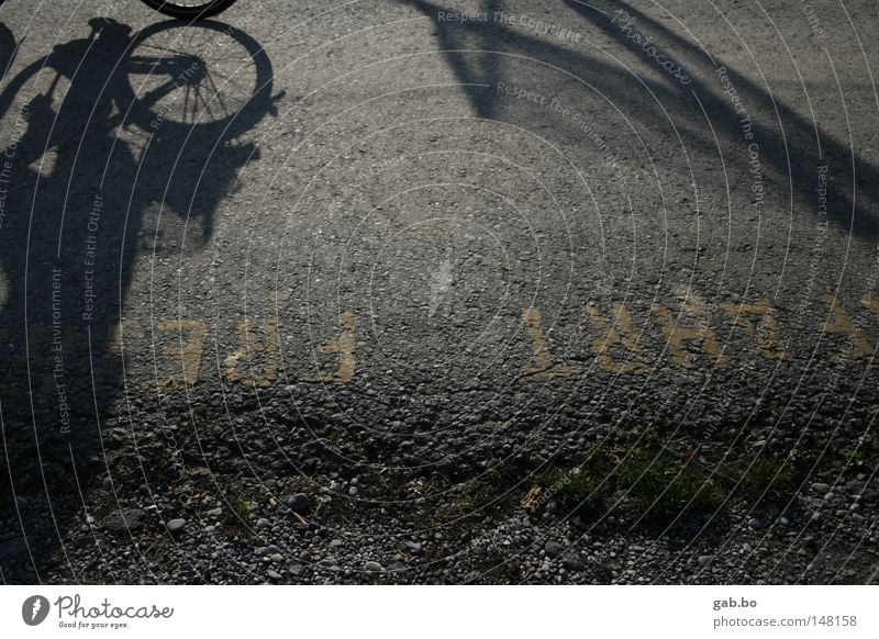 freie.fahrt Straße Dynamik Geschwindigkeit Fahrrad Reifen Schatten Perspektive Licht Reflexion & Spiegelung Asphalt Ordnung Kieselsteine grün Blatt Freiheit