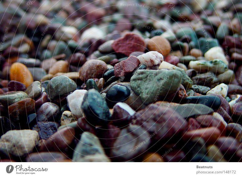 Meer der Steine Makroaufnahme Kieselsteine glänzend Mineralien Farbige Steine Glänzende Steine bunte Kiesel