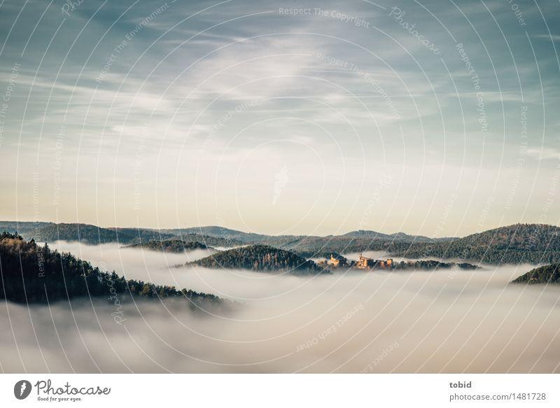 Über den Wolken Natur Landschaft Himmel Horizont Schönes Wetter Nebel Wald Hügel Burg oder Schloss Ruine ästhetisch Ferne Unendlichkeit hoch Freiheit Idylle