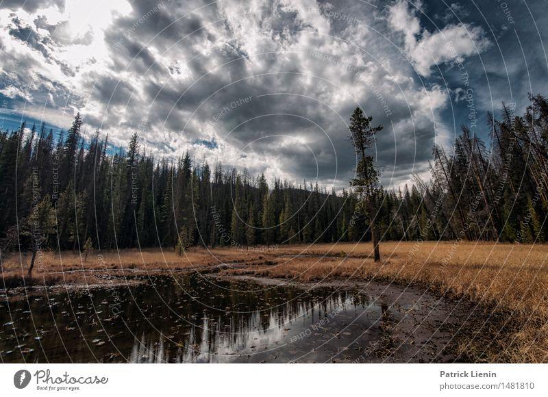 Himmel Natur Ferien & Urlaub & Reisen Pflanze Sommer Sonne Landschaft Einsamkeit Wolken Wald Berge u. Gebirge Umwelt Herbst See Felsen Park