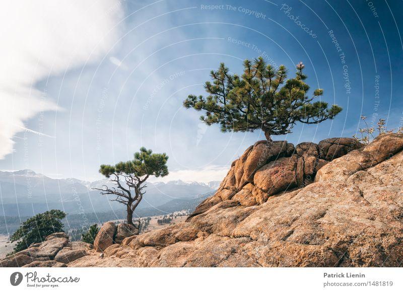 Rocky Mountain High Himmel Natur Ferien & Urlaub & Reisen Sommer Baum Landschaft Einsamkeit Wolken Wald Berge u. Gebirge Umwelt See Felsen Park Tourismus