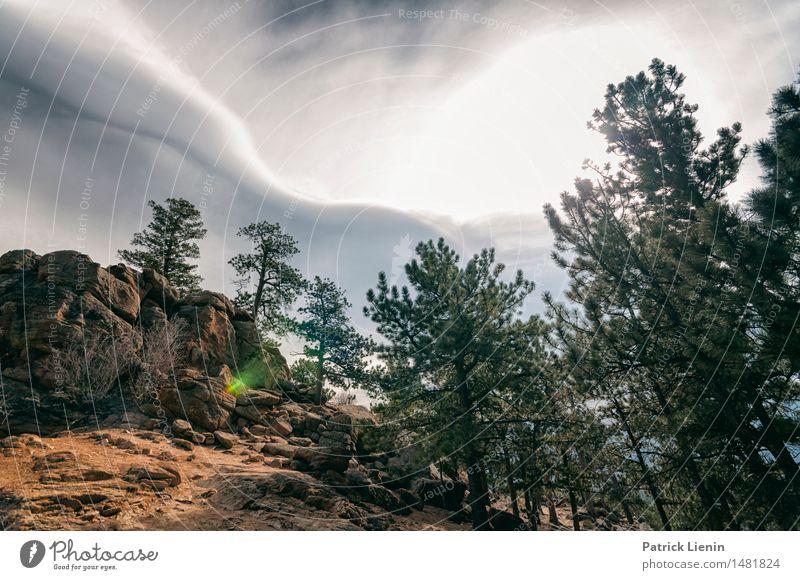 Rocky Mountain Sky Himmel Natur Ferien & Urlaub & Reisen Landschaft Einsamkeit Wolken Wald Berge u. Gebirge Umwelt See Felsen Park Wetter Idylle Aussicht Klima