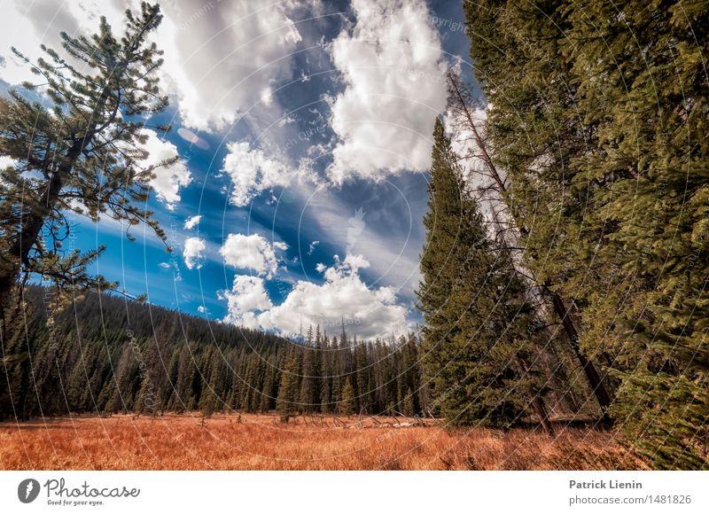 Travelling High Wellness Leben Wohlgefühl Ferien & Urlaub & Reisen Abenteuer Berge u. Gebirge Umwelt Natur Landschaft Urelemente Luft Himmel Wolken Sommer Klima