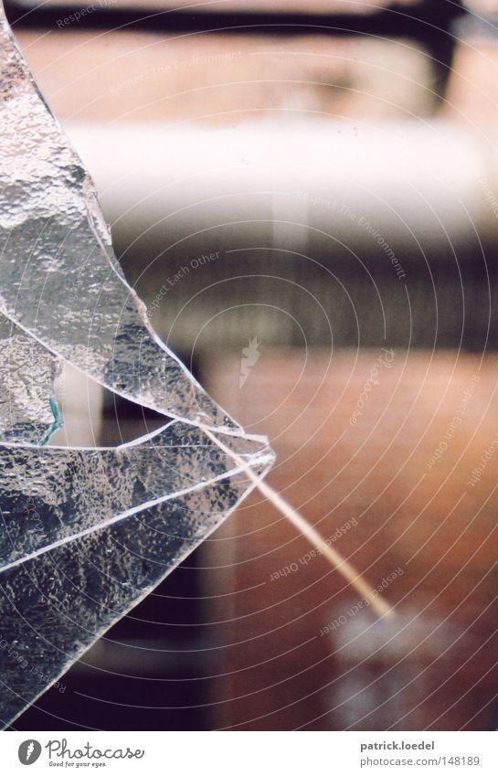 [H08.2] Butch, der Fisch Glas Scherbe gebrochen Fenster kaputt Riss Wand Fabrik Lagerhalle Halm verfallen Industrie Strukturen & Formen Fischkopf Continental