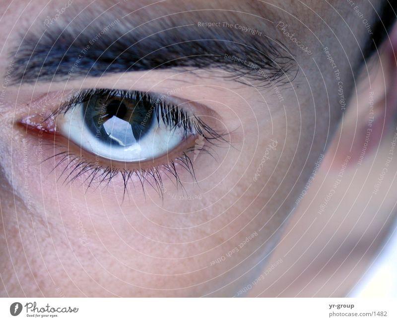 Augenblick Mann Pupille Wimpern Augenbraue Nahaufnahme Gesicht Mensch Kopf Haut