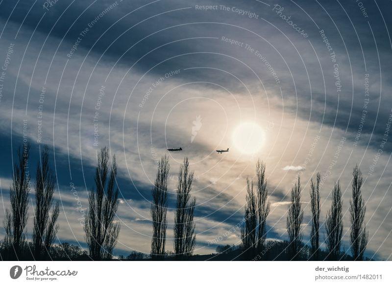 In Formation Ausflug Abenteuer Freiheit Rundflug Kunstflug Umwelt Natur Luft Himmel Wolken Sonne Sonnenlicht Schönes Wetter Baum Sträucher Hügel Verkehrsmittel