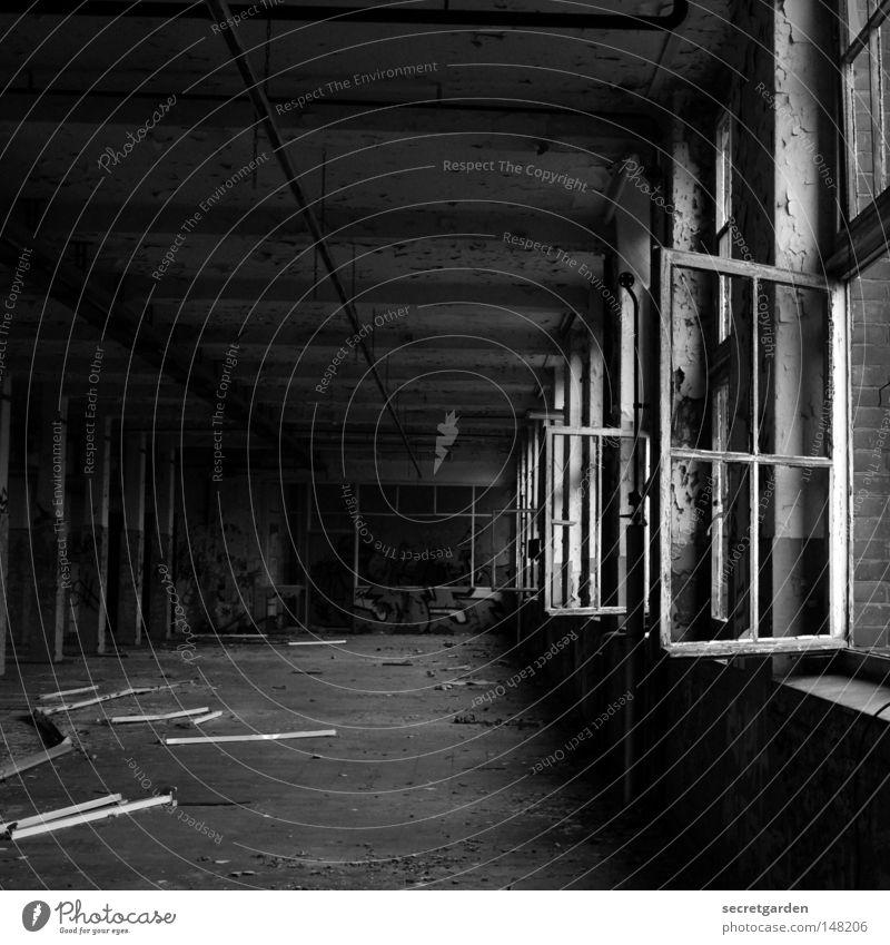 [H 08.2] durchzug. alt Einsamkeit Ferne dunkel Fenster Wand Graffiti grau springen Wege & Pfade Mauer Traurigkeit Luft hell Linie