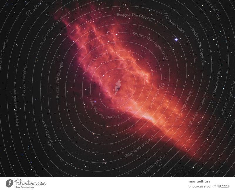 California Nebula rot Nebel Stern Unendlichkeit Weltall Wissenschaften Nachthimmel Sternenhimmel Teleskop Astronomie Astrofotografie