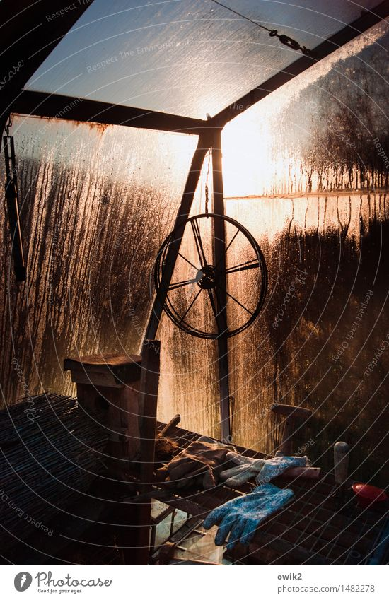 Im Glashaus Gewächshaus Rad Handschuhe Dinge Ecke Glaswand Kondenswasser Metall leuchten alt nass Stimmung ruhig Idylle friedlich Stillleben Wassertropfen