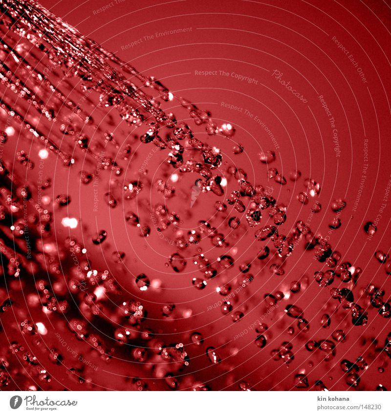 temporäre diagonale rot Wasser Wassertropfen Tropfen Strahlung spritzen dunkel intensiv Farbe Vergänglichkeit nass Reflexion & Spiegelung Beleuchtung feucht