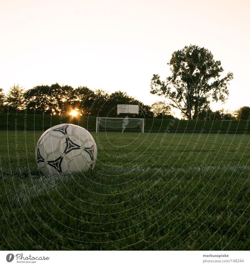 anstoss -> tor -> jubel -> sieg Sonne Linie Fußball Feld Platz Rasen Netz Freizeit & Hobby Tor Spielfeld Sportplatz Fußballer Weltmeisterschaft Kick Südafrika