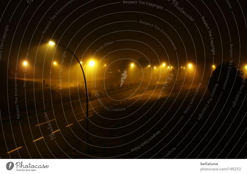 Nacht- und Nebelaktion Lampe Wetter Regen Baum Brücke Verkehrswege Straße Wege & Pfade dunkel hell Gefühle Stimmung Sehnsucht Perspektive Richtung Nieselregen