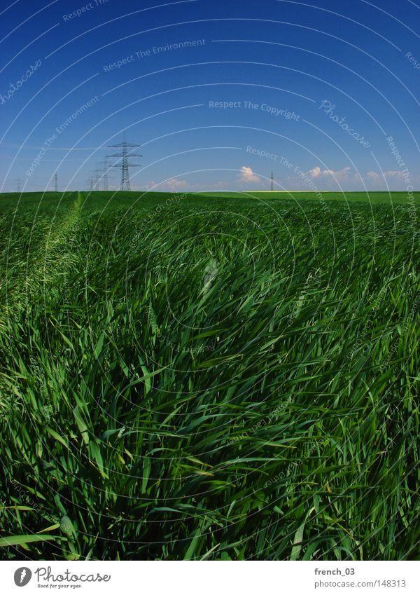 Überall Strom II Natur Himmel grün blau Wolken Ferne Frühling Freiheit Landschaft Kraft Feld Umwelt groß Energie frei