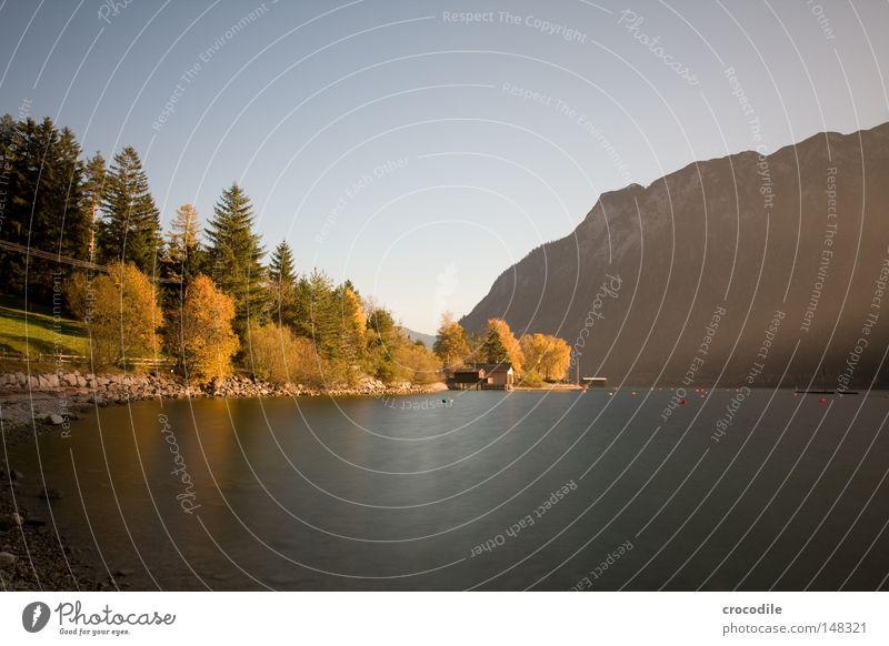 Herbstraum Wasser Himmel Baum ruhig Blatt gelb dunkel kalt Herbst Berge u. Gebirge See Kabel Frieden Vergänglichkeit Alpen Alpen