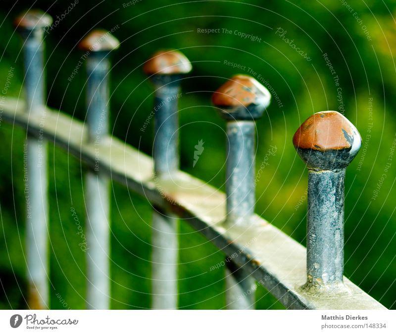 Geländer grün Farbe Herbst Metall Hintergrundbild verfallen Zaun Grenze Rost Geländer Tiefenschärfe Eisen Säule gefangen Barriere Verbote