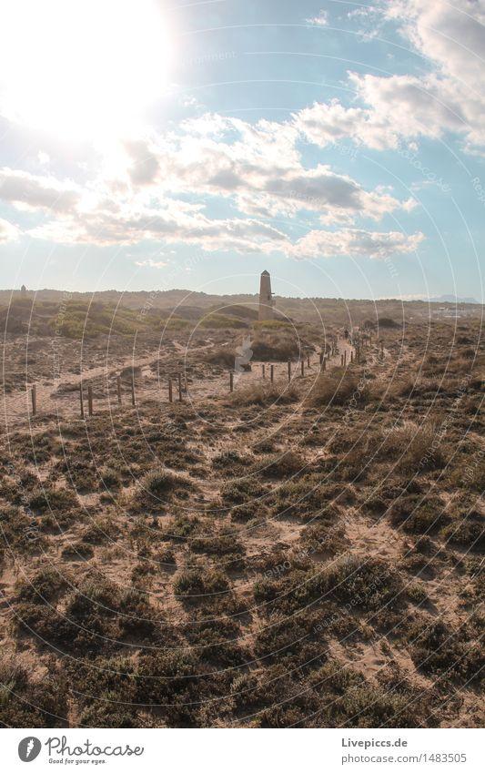 Mallorquinische Steppe Ferien & Urlaub & Reisen Ausflug Natur Landschaft Sand Himmel Wolken Sonne Sommer Pflanze Sträucher Wildpflanze blau braun mehrfarbig