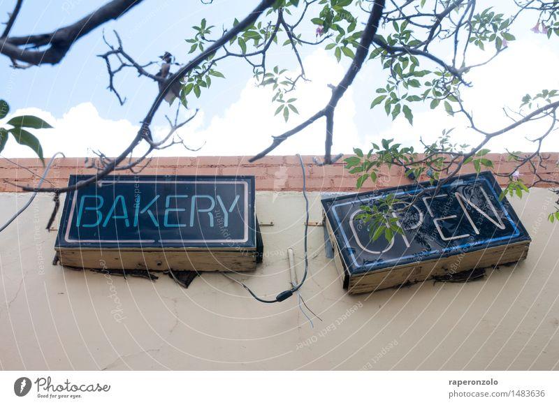 Kernkompetenz: Backen Fassade offen Schilder & Markierungen Ernährung genießen Kochen & Garen & Backen geschlossen einzigartig Neigung Werbung Ladengeschäft