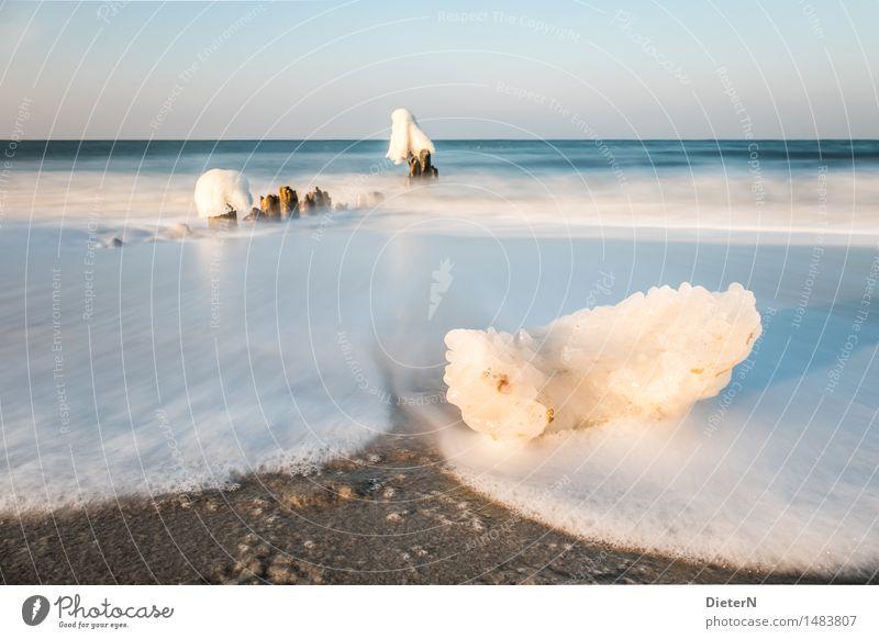 Scholle Natur Landschaft Sand Wasser Himmel Wolkenloser Himmel Horizont Winter Wetter Schönes Wetter Wind Eis Frost Küste Strand Ostsee Meer blau braun weiß