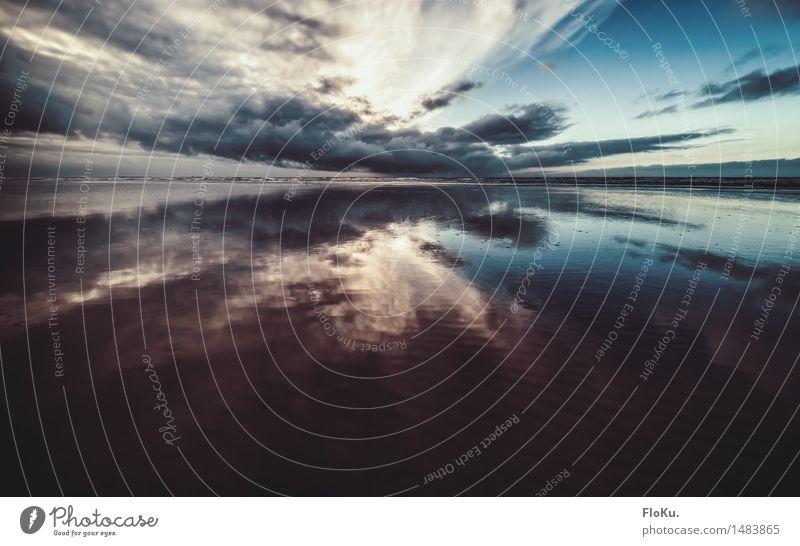 Tiefflieger Ferien & Urlaub & Reisen Tourismus Ausflug Ferne Strand Meer Umwelt Natur Landschaft Urelemente Erde Sand Luft Wasser Himmel Wolken Wellen Küste