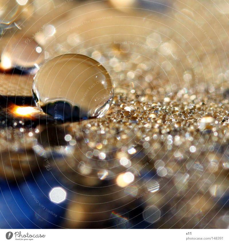 TauPerle II Glasperle Wassertropfen Glaskugel Murmel nass frisch kalt Morgen Herbst Jahreszeiten herbstlich braun Gefäße Blatt Regen Sonnenlicht Sonnenstrahlen