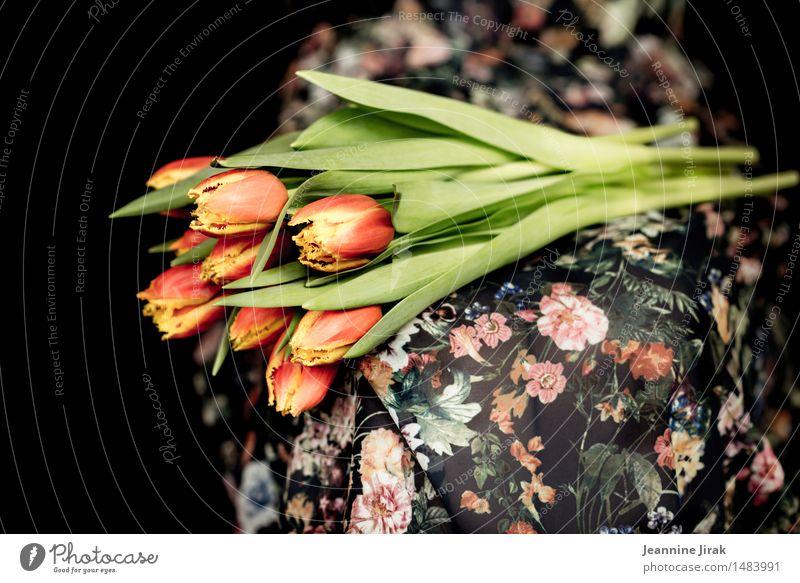 Frühling mit Tulpen II Mensch Natur Pflanze Farbe Blume Leben feminin Lifestyle Glück Feste & Feiern orange Zufriedenheit sitzen Geschenk Jahreszeiten Kleid