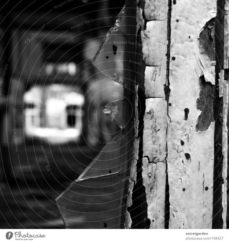 [H 08.2] splatter film alt weiß Einsamkeit schwarz dunkel Fenster kalt Herbst Holz Architektur Traurigkeit Luft hell Linie Arbeit & Erwerbstätigkeit Raum