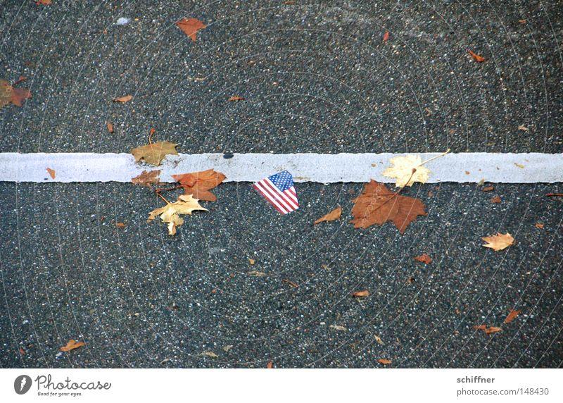 Walk the line Blatt Herbst Linie Hoffnung USA Fahne liegen Müll unten Amerika Richtung Stars and Stripes gerade Neuanfang gebraucht Finanzkrise