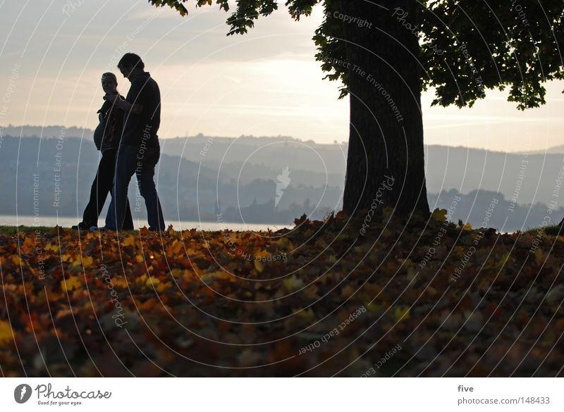 Abschied und Neubeginn Herbst Mensch Blatt Baum schwanger Spaziergang Stimmung Licht Farbe